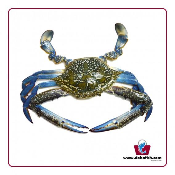 Crab Male