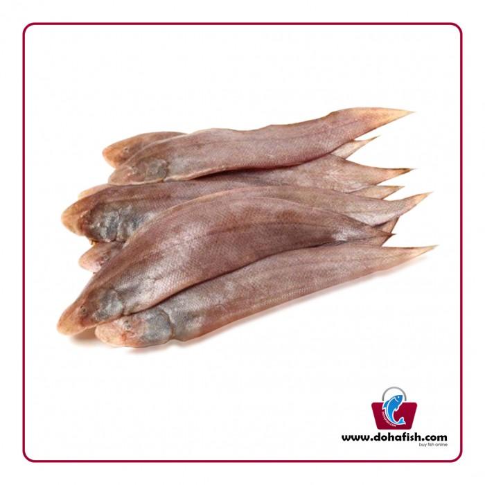 Sole Fish / Sole Musa